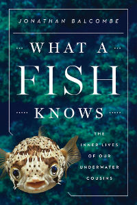 What A Fish Knows Book Cover - Small